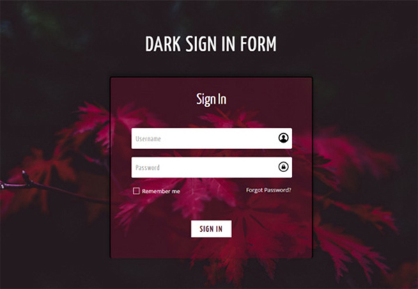 dark-signin-form