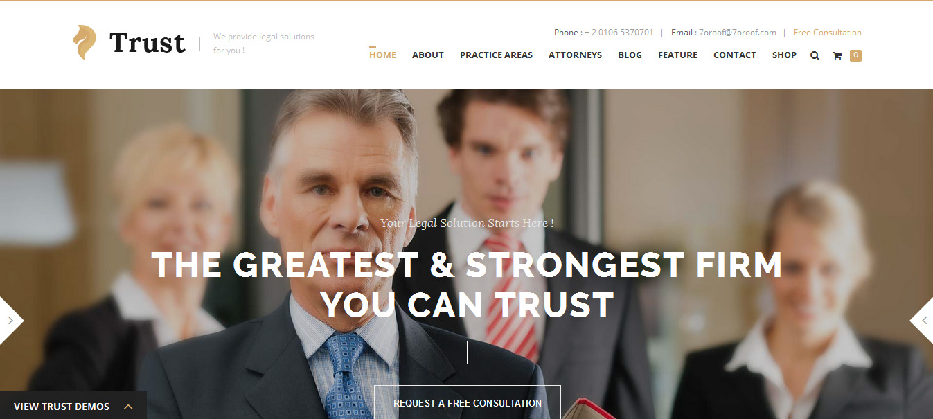 Trust - solicitor WordPress themes