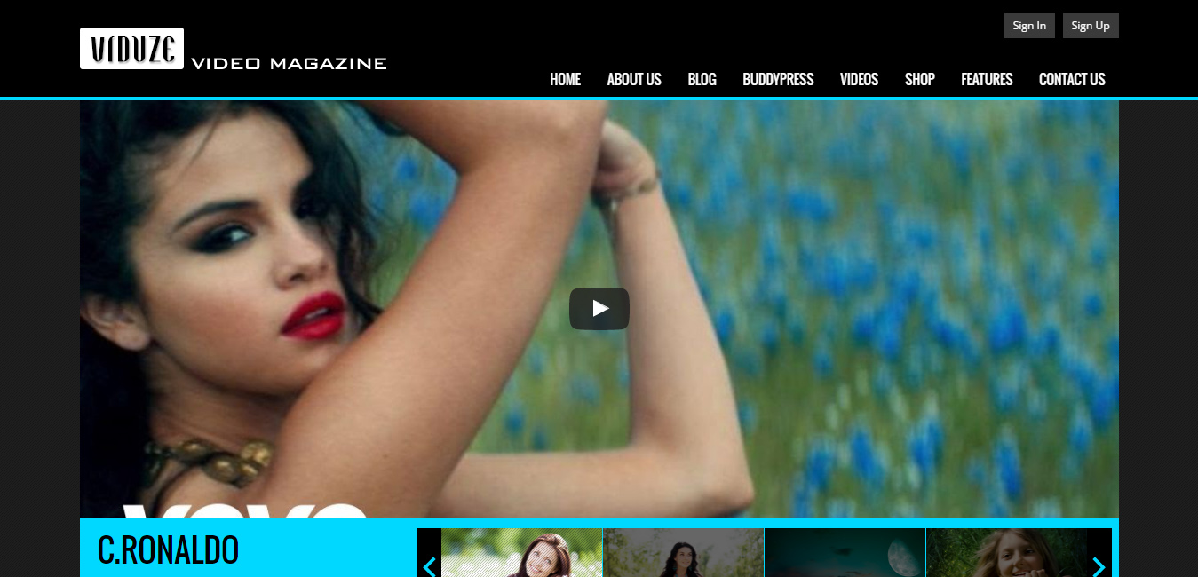Viduze - cinema WordPress themes