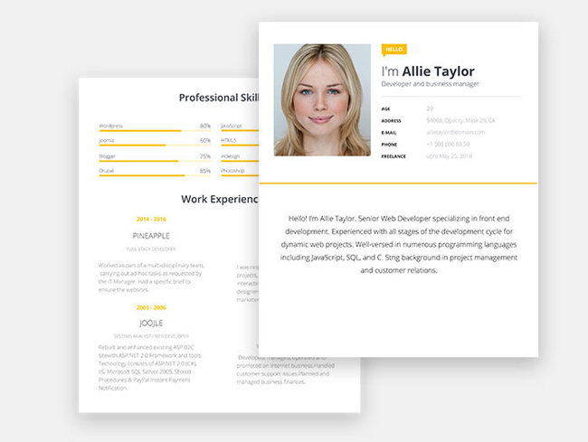 Modern Free Resume CV Template