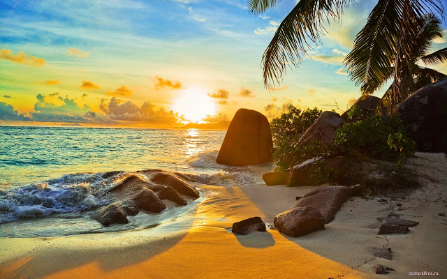 Paradise Theme